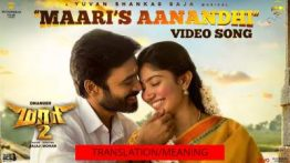 maari's aanandhi song lyrics with english translation/meaning
