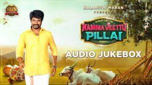 Gaanda Kannazhagi Song Lyrics - Namma Veettu Pillai