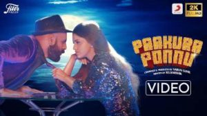 Paakura Ponnu Song Lyrics - Varun Sunil