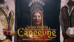 Lirik Lagu Canggung - Wany Hasrita