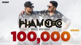 Pullingo Song Lyrics - Havoc Brothers