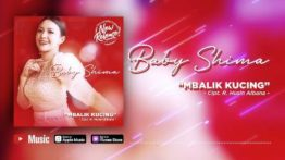 Lirik Lagu Mbalik Kucing - Baby Shima