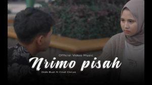 Lirik Lagu Nerimo Pisah - Didik Budi Feat Cindi Cintya Dewi
